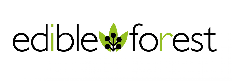 EFG Logo new
